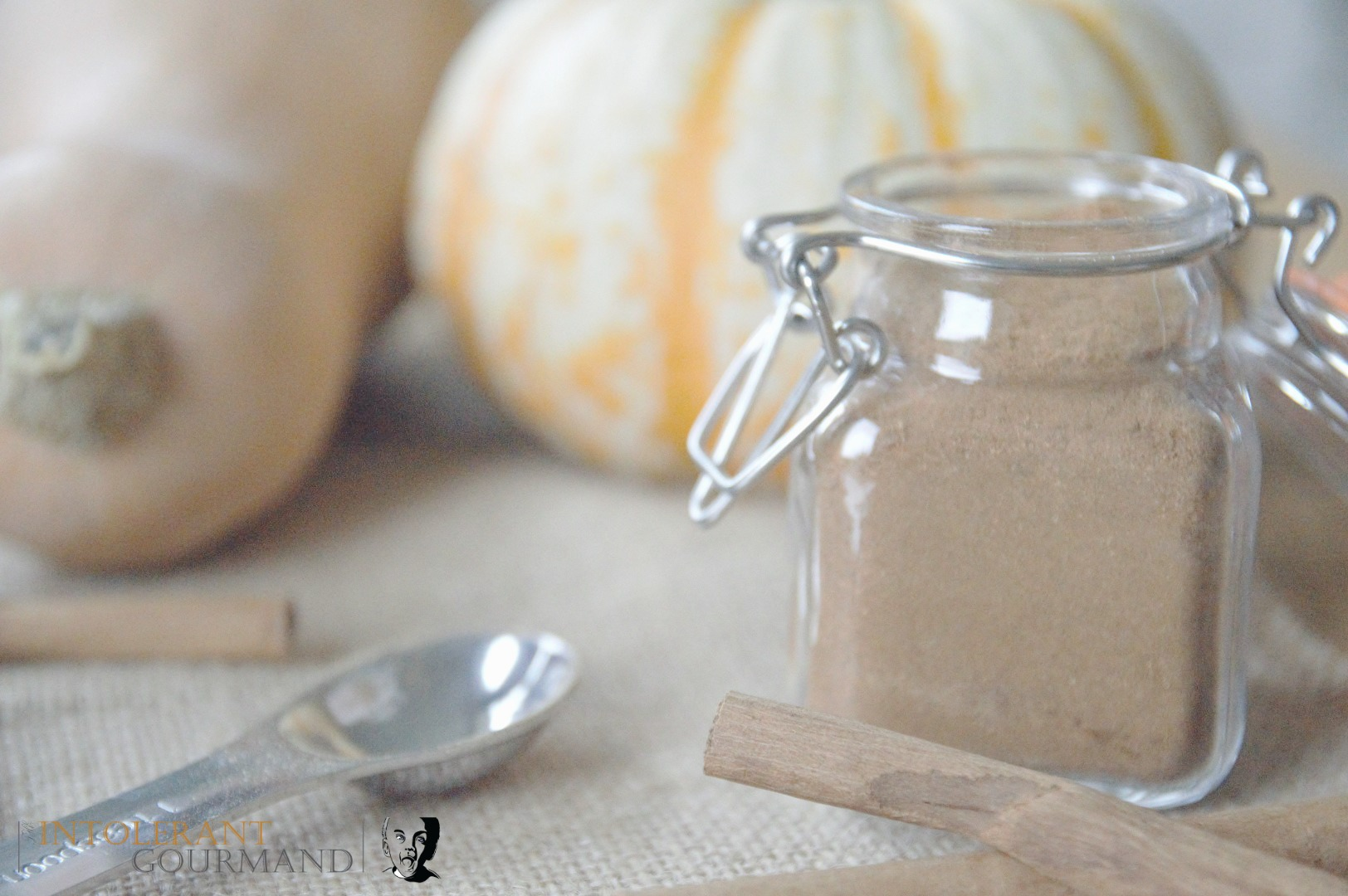 Pumpkin spice mix - perfect for crumbles, latte, cheesecake, cake and more! www.intolerantgourmand.com